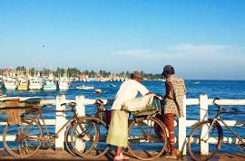 Sri Lanka scenery