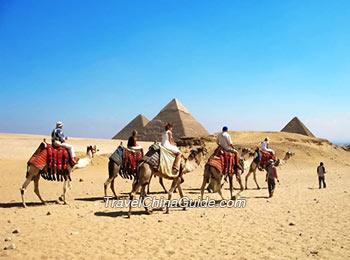 Camel riding at Giza Pyramids