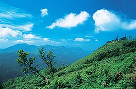 Natural scenery in South India