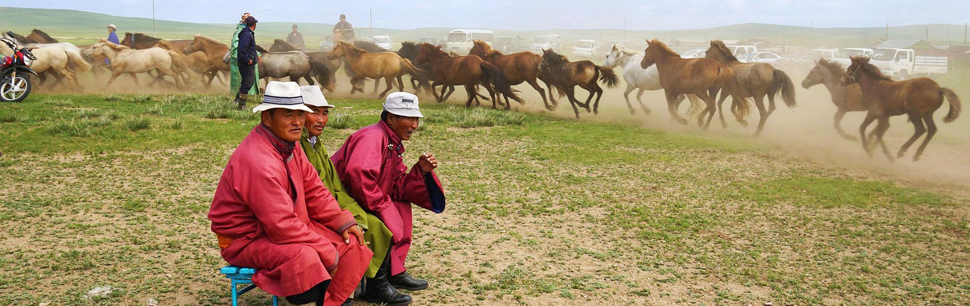 mongolia-grassland.jpg
