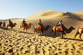 Camel riding along the Echoing-sand Dune