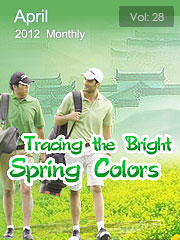 Tracing the Bright Spring Colors