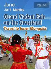 Grand Nadam Fair on the Grassland