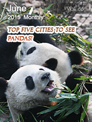 Top Five Cities to See Pandas!