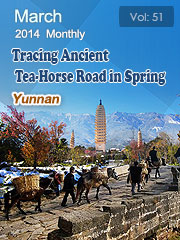 Tracing Ancient Tea-Horse Road in Spring