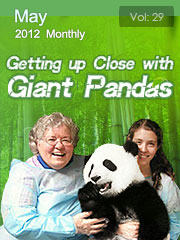 Getting up Close with Giant Pandas