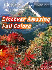 Discover Amazing Fall Colors