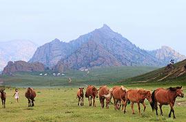 Terelj National Park, Ulaanbaatar