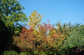 Fragrant Hills Park
