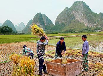 Yangshuo rural life