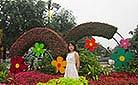 Big Wild Goose Pagoda Square, Xi'an