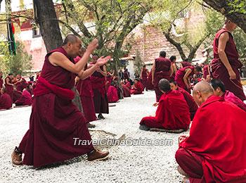 Lamas debating at Sera Monastery