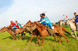 Grassland in Hohhot
