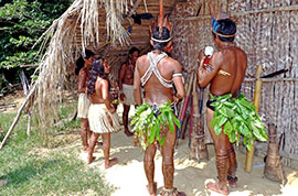 Local tribes in Amazon
