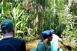 Peru Amazon Jungle