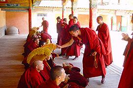 Tibetan lamas