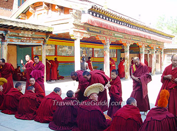Lamas are debating sutra, Kumbum Monastery