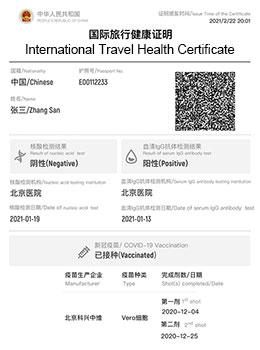 Paper International Travel Health Certificate