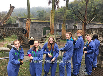 Doing volunteer work at Dujiangyan Panda Base